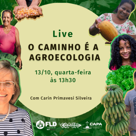 FLD-COMIN-CAPA promovem conversa ao vivo com Carin Primavesi
