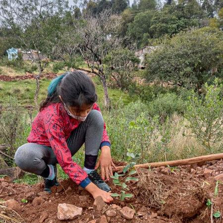 Na região Central do Rio Grande do Sul, comunidades indígenas lutam por segurança alimentar e demarcação de seus territórios